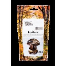 Kasol - Dried Hazel Bolete / Kozlarz 20g