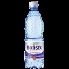 Borsec - Still Mineral Water / Apa Minerala Plata 500ml