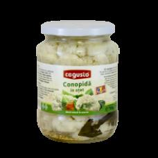 Conservfruct - Cauliflower in Vinegar / Conopida in Otet 700g