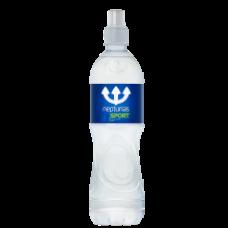 Neptunas - Still Natural Mineral Water 750ml