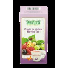 Plafar - Forest Fruit Tea / Ceai Fructe de Padure 30g