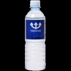 Neptunas - Still Natural Mineral Water 500ml